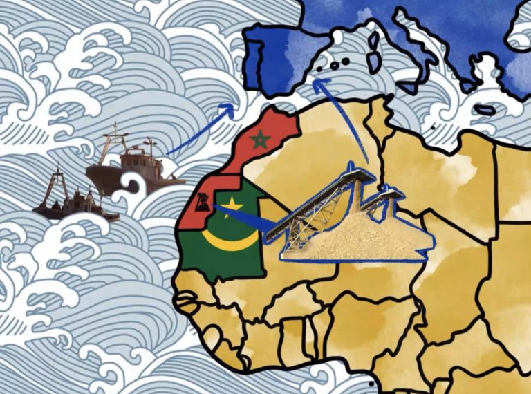 Historia del Sáhara en 182 segundos